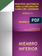 Principios Anatómicos Módulo II