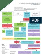 Pneumonia-Paraneumonic-Eff-Pathway.pdf