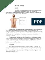 DESVIACIONES%20DEL%20RAQUIS.pdf