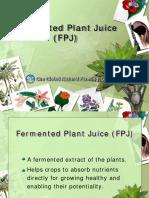 Fermented-Plant-JuiceFPJ.pdf
