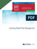PG-Auditing-Model-Risk-Management.pdf