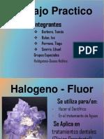 Trabajo Practico -Fisico Quimica