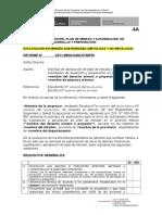 Modelo 4A DesarrollPreparSubterran(DS020) 29agos2012