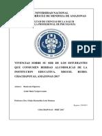 Informe Final Vernardita