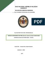 Pp Manejo Agronomico de Piña Limpio Presentar 3