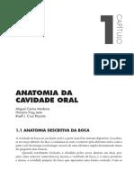 Boca.pdf