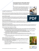 BC SPCA RHD Information Sheet for Shelters Rescues and Sanctuaries