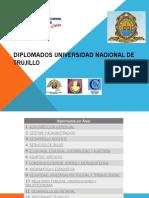 Diplomados Universidad Nacional de Trujillo-2014