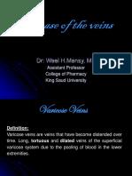 Varicose Veins - B