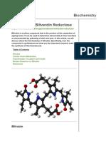Bilirubin and Biliverdin Reductase
