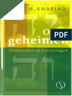 Shapiro, Rami M - Open Geheimen