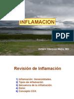 6243467-Inflamacion