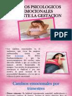 Cambios Psicologico y Emocionales Durante El Embarazo