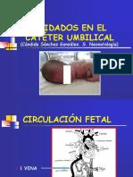 Cateter Umbilical