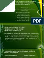 vertederos hidraulica.pptx