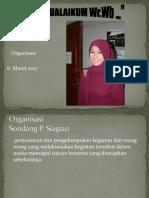 Organisasi-2017.pptx