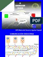 Comunicación Celular 1