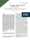 Contaminação Fúngica de Plantas Medicinais Utilizadas Em Chás