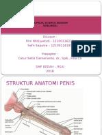 CSS Sirkumsisi - Dr Catur