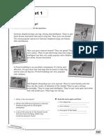 16 Worksheets
