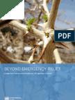 Darfur   Beyond Emergency Relief