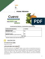 Ficha Tec Cueva