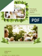 Psicología social de la familia