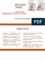 20a Sesión SNyE Funciones de las Gónadas Masc y Fem