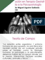 Especialización en Terapia Gestalt Aplicada a La Psicopatología