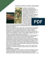 Problemas Mundiales Derivados de La Pobreza y El Deterioro Medio Ambiental