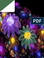 Flor Arco Iris