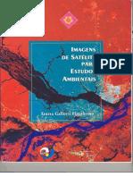 LIVRO - Imagens de Satélites para Estudos Ambientais.pdf