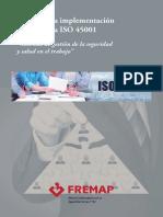 Guia implementacion 45001.pdf