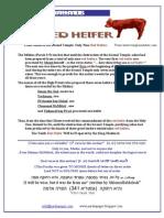 The Red Heifer