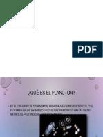 Presentación1b