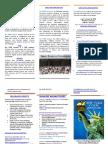 2018 STEM Institute Brochure vs 1