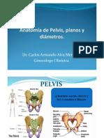 Anatomía de Pelvis, Planos y Diámetros