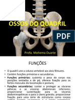 Ossos Do Quadril