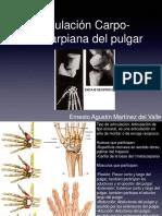 Articulacion Carpo-metacarpiana Del Pulgar