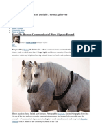Article About Horse Communication