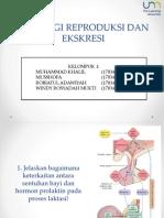 Fisiologi Reproduksi Dan Ekskresi