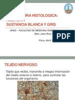 1. Estructura Histologica de La Neurona Sustancias 1