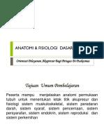 Anatomi & Fisiologi Dasar Manusia