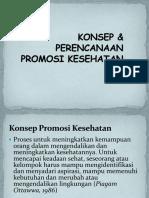 11-PROMKES