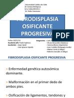 fop-51-170319012952