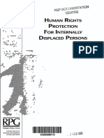 Human Rights Protection for Internally