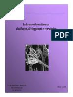 PDF BARTSCHI Claire PPT Les Levures Et Les Moisissures