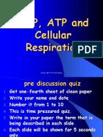 ADPATPandCellularRespiration.ppt