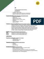 modelo-de-curriculum-construccion.pdf