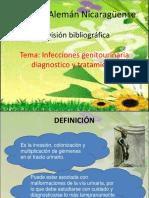 Revision Bibliografica IVU